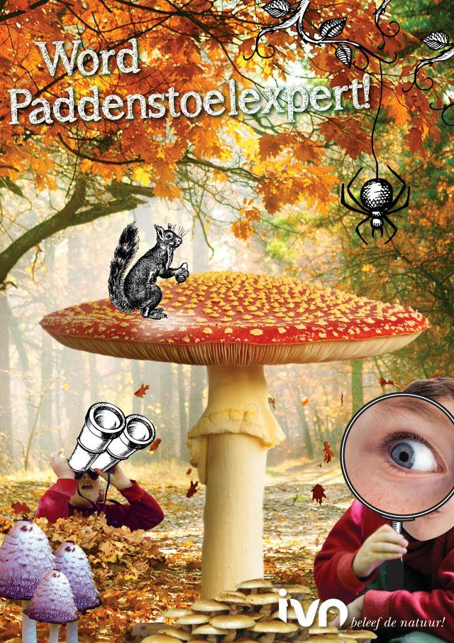 paddenstoelexpert