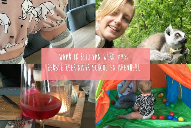 Waar ik blij van werd #45; eerste keer naar school en de Apenheul