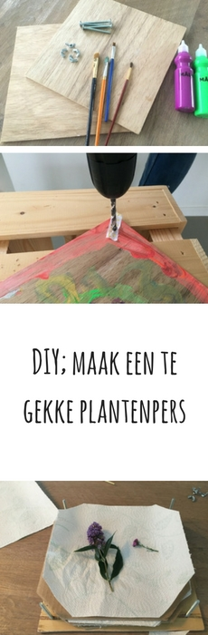 pinterest-afbeelding-plantenpers