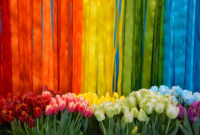 De lente komt er alweer aan! Alles wat je in huis winterklaar gemaakt hebt, kan weer naar de zolder. Tijd om je lenteklaar te maken.